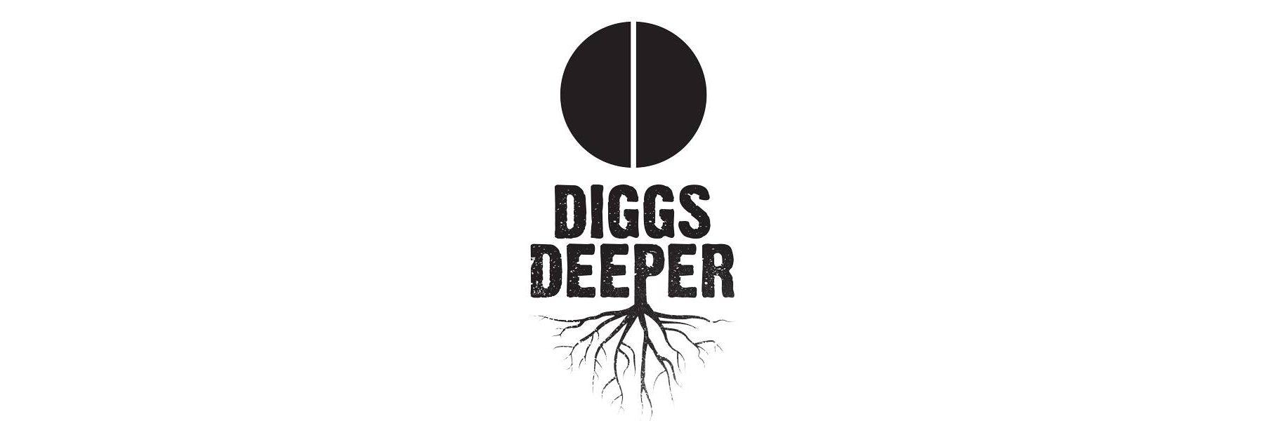 Diggs Deeper VI